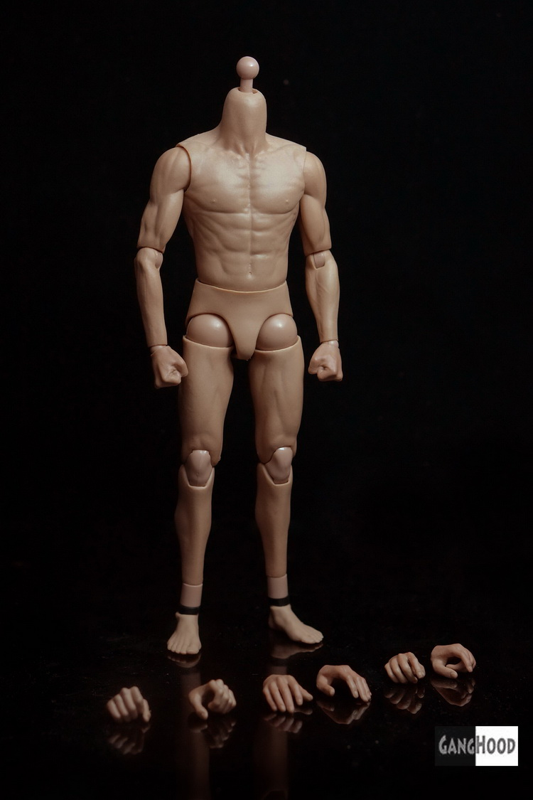 1:6 scale Figure doll accessories Asia Bruce Lee muscles male body for 12″ Action figure doll.not include head and clothes