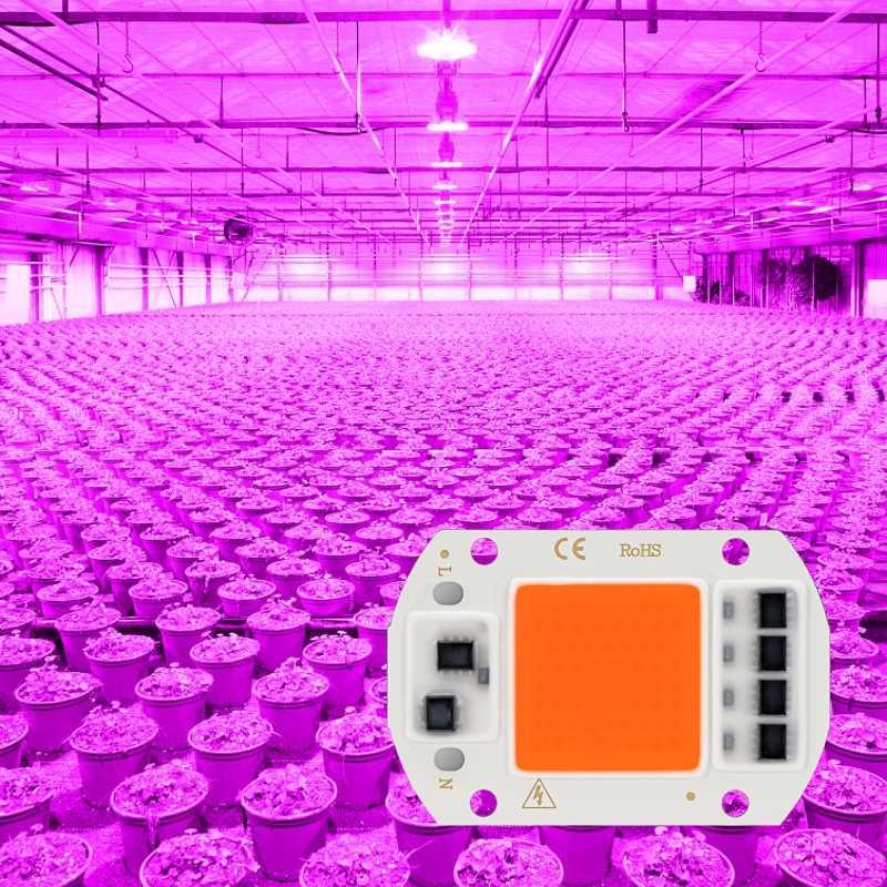 Led Cob Grow Light Chip Full Spectrum AC 220V 110V 10W 20W 30W 50W  380nm-780nm Phyto Lamp For Indoor Plant Seeding Flower Grow