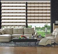 City Style Double Layer Blinds Zebra Roller Blinds Rainbow Blinds for Window JN877