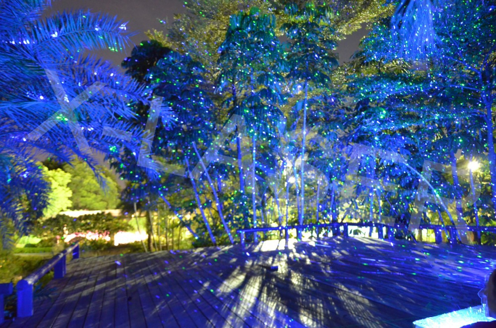 2014 Christmas Effect Lights Starfield Laser Projector