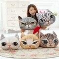 40 cm * 38 cm Novo gato 3D emoji Travesseiro almofada Cochilo Coxim Do Carro Personalidade Criativa forma de Gato rosto sorridente travesseiro Bonito assento coussin