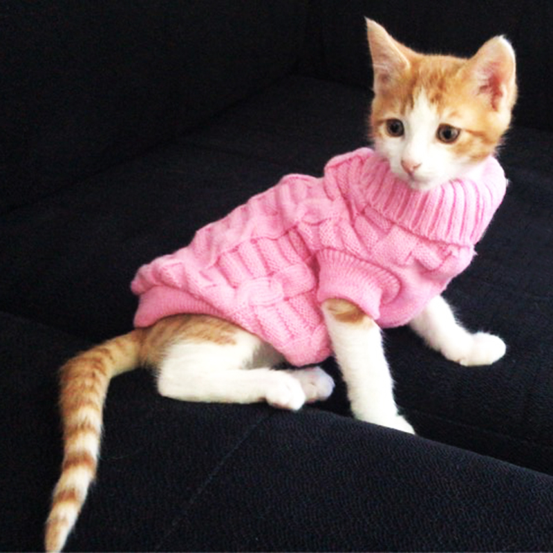 Winter Warm Pet Cat Clothes Solid Knitted Sweater Clothing For Small Cats Dogs Cotton Cat Kitten Kitty Coat Jacket Pet Products