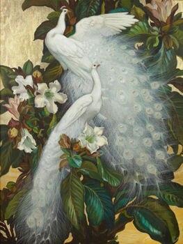 Home Decor Hand Art Oil painting birds white peacocks