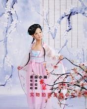 Yue Wu Tao Hua Dance in Peach Bushes under Moon New Photography Costume for Girls Dance Costume качели wu yue tian