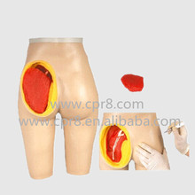 BIX-H4T Advanced Hip Muscle Injection And Anatomical Structure Model  MQ175