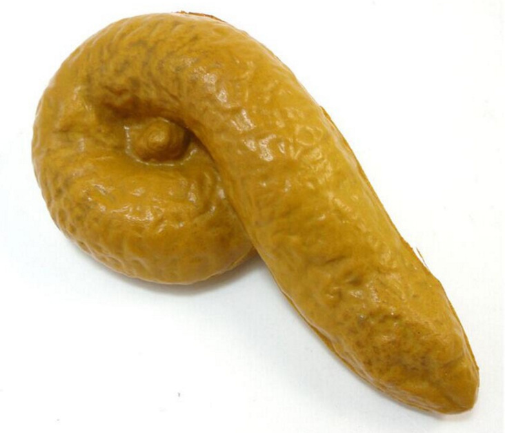 Prank Fake Poop Turd Crap Poo Gross Joke Dirty Trick Novelty Funny Pooper Prop Realistic Shits Poop Fake Shit Practical Gag Toy