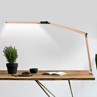 Newest LED Dimmable Long Arm Desk lamp Foldable Ratation Eye Protection Bed Lamp Study RC Control Clip on Reading Table Lighting