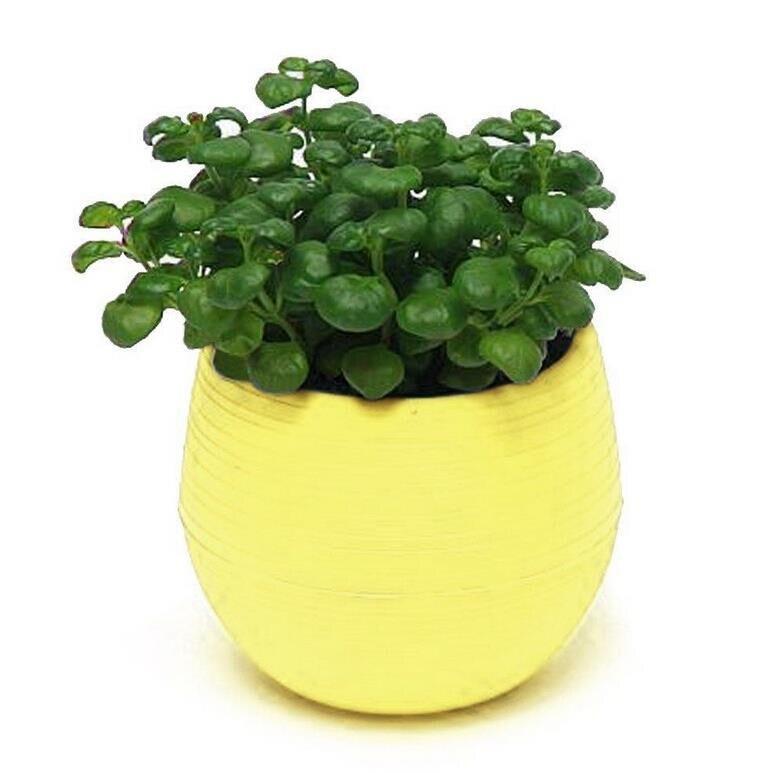 1pcs Gardening Mini Plastic Flower Pots Vase Square Flower Bonsai Planter Nursery Pots /flower pots planters/garden pots 5
