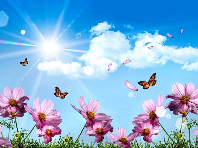 Flores Mariposas Azules Sky Naturaleza Arte Enorme lona de la ...