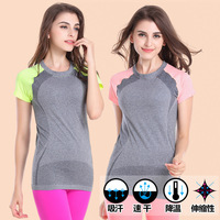 Women Fitness Sports Suits Quick Dry Tops Running Shirt Bodybuilding Clothing Jogging Gym Tees Female Summer