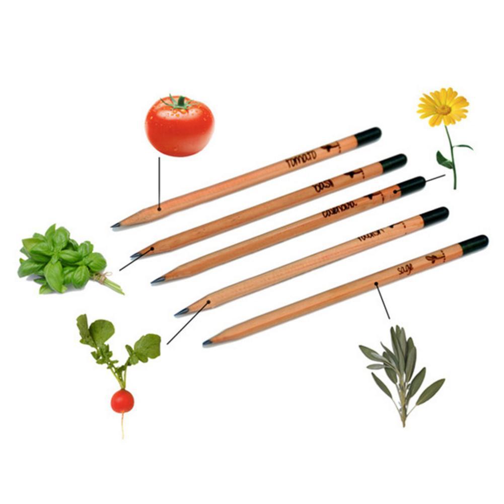 8PCS Idea Germination Pencil Set To Grow Pencil Sprouted Pencil Mini DIY Desktop Potted Plant