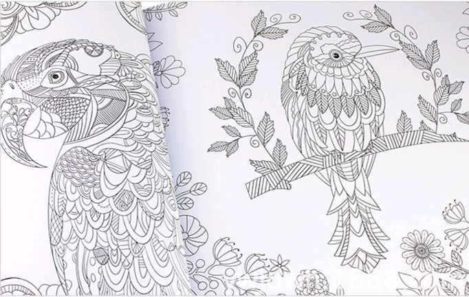 Coloring Book Secret Garden : Aliexpress.com : buy the secret garden mystery album in