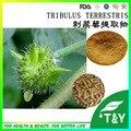 organic plant extract tribulus terrestris powder 500g/Lot
