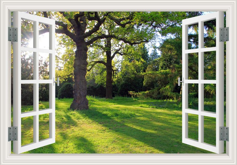 Amazing Forest Tree Landscape 3d Wall Sticker Removable