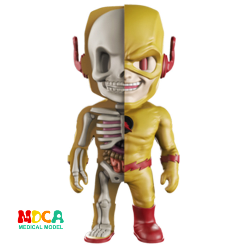 REVERSE FLASH 4D XXRAY master Mighty Jaxx Jason Freeny anatomy Cartoon ornament robin hood 4d xxray master mighty jaxx jason freeny anatomy cartoon ornament