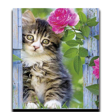 Painting Diamond cross stitch Diy Embroidery 3d Square diamond Mosaic full image Flowers and Cat