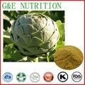 Top Qualidade 5% de extrato de alcachofra cinarina para o colesterol