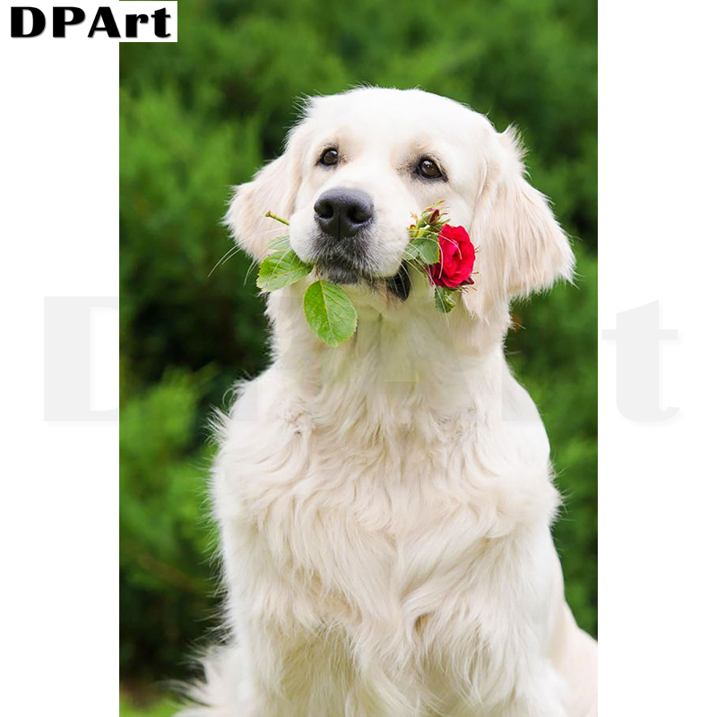 DIY 5D Diamond Painting Kit Labrador and Rose Crystal Embroidery Cross...