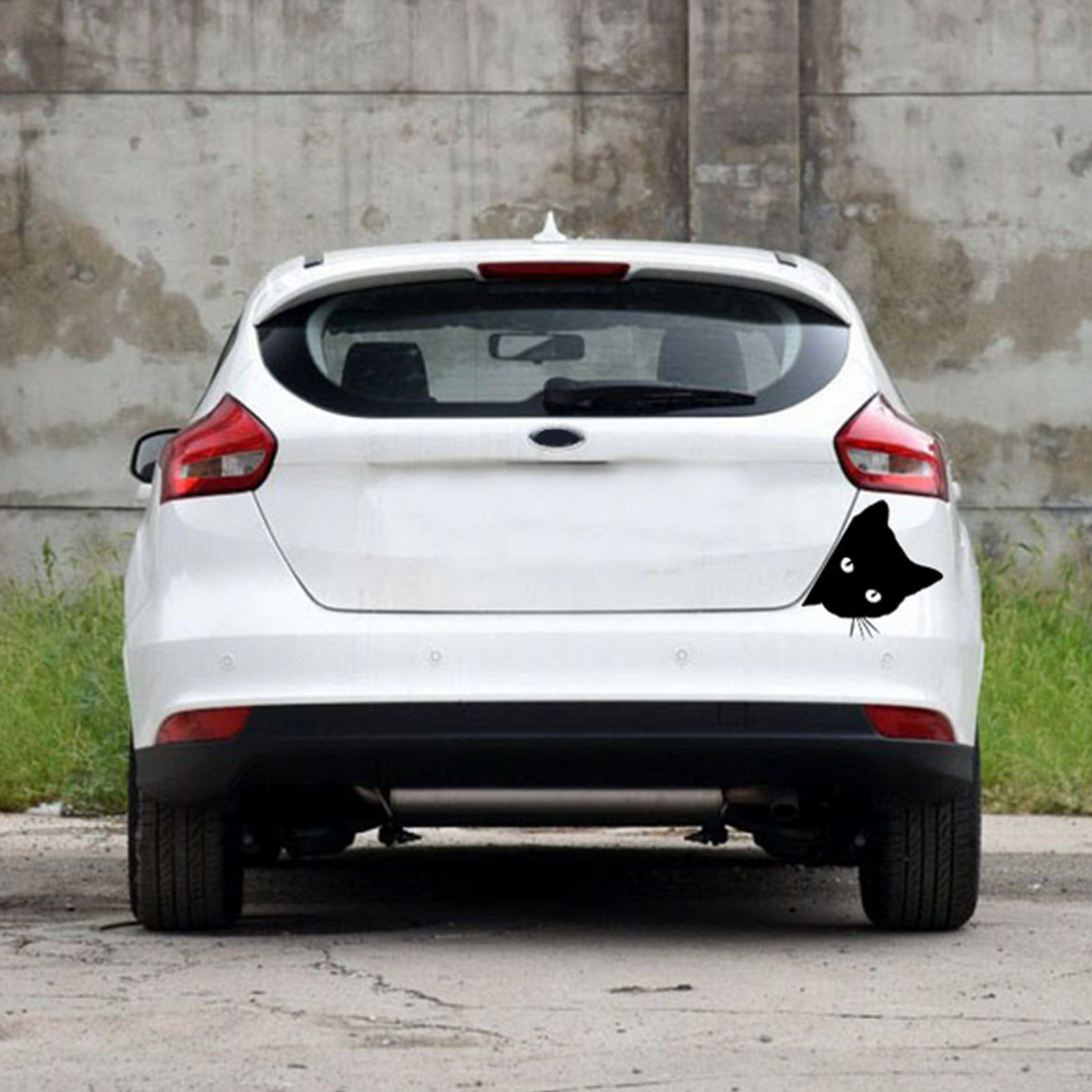 Peering Cat Face Car Sticker Decal