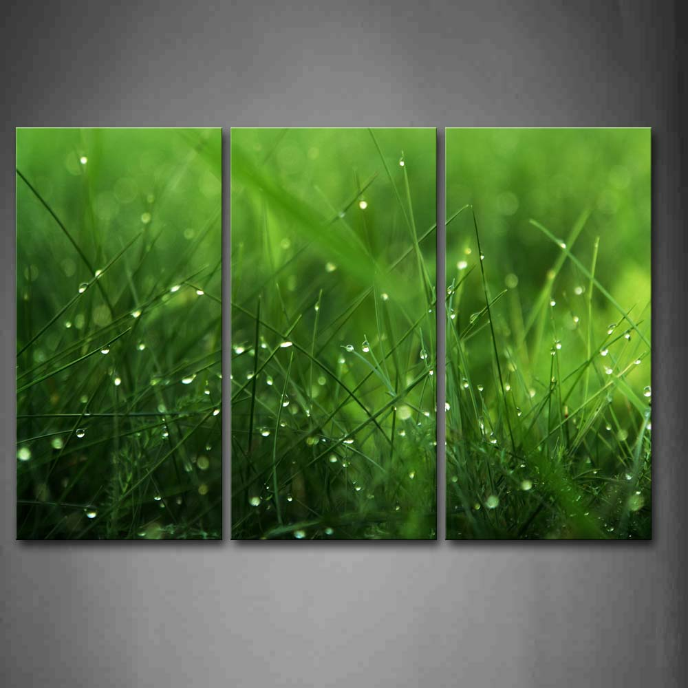 Framed Wall Art Pictures Water Drops Grass Canvas Print Botanical Posters With Wooden Frames For Home Living Room DecorFramed Wall Art Pictures Water Drops Grass Canvas Print Botanical Posters With Wooden Frames For Home Living Room Decor