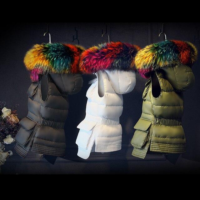2018 Kış ceket kadın ceket aşağı yelek kadın Kore versiyonu, büyük saç yaka, kısa, ışık yelek,