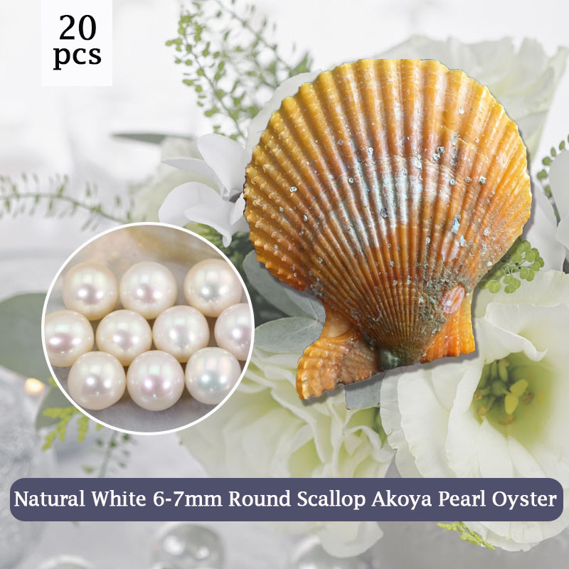 Pure Whiteness Bead in Scallop Oyster 7-8mm Real Pearl Natural White,20pcs Vacuum-Packing Free Shipping DIY Gift for Girl PJW290