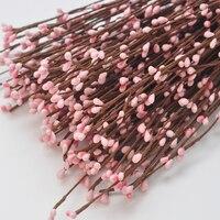 핍 베리 화환 포도 나무 줄기 아기 핑크 Pip, 딸기, 핍 베리,