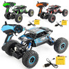 1 18 Cross Country Climbing Car 2 4G Large Tire Electric High Speed Car Remote Control
