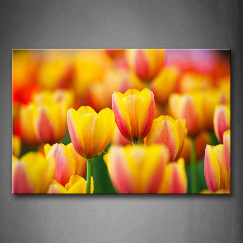 Encadrée mur Art photos jaune Orange tulipes toile impression fleurs affiches avec des cadres en bois pour la maison salon décor