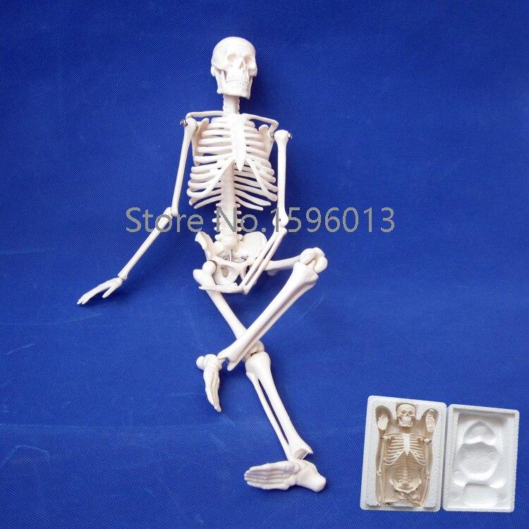 HOT 45CM Mini Skeleton model,human Skeleton Model plastic standing human skeleton life size for horror hunted house halloween decoration