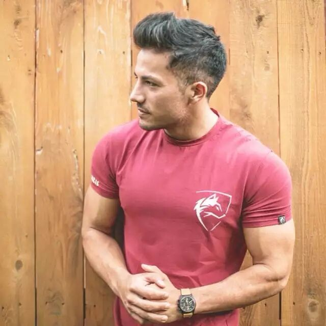 2019 ALPHALETE Brand clothing Gyms Tight   t  -  shirt   mens fitness   t  -  shirt   homme Gyms   t     shirt   men fitness Summer top