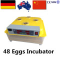 Hot Sale! 2016 China Poultry Egg Incubator 48 Eggs Incubator for Hatching ZZ-48