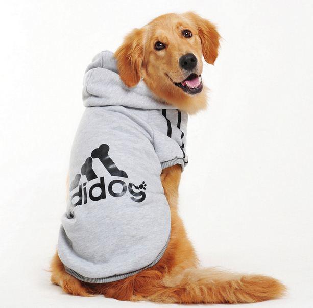Ropa para perro golden retriever