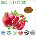 professional manufacture pomegranate peel extract powder for Anti-cancer 200g/bag