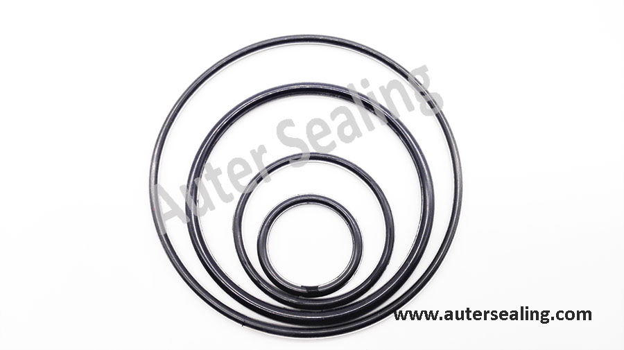 FEP Encapsulated O ring 9 7x2 5 FEP Viton FEP ORING FKM rubber ring FEP FPM