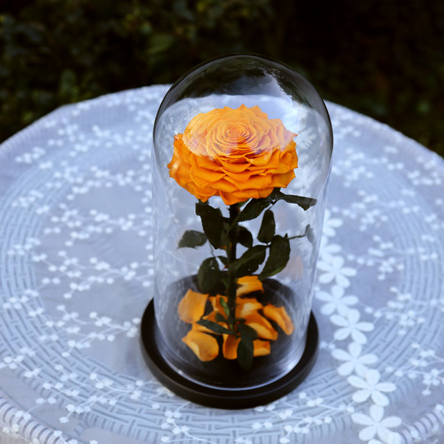 Online shop blue sky the beautiful glass cover fresh preserved rose blue sky the beautiful glass cover fresh preserved rose flower for wedding centerpieces home decorative flowers junglespirit Gallery