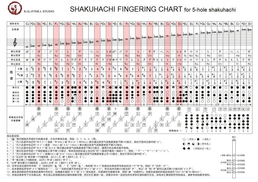 D ключ Bamboo Shakuhachi флейта 5 отверстий коричневый японский Музыкальные инструменты с симпатичным разрезом деревянный духовой инструмент