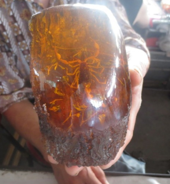 Asian Antiques old Amber Scorpion big statue Free ShippingAsian Antiques old Amber Scorpion big statue Free Shipping