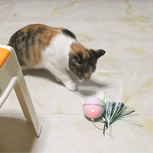 Image 5 - Funny Pet Dog Cat Toys Chargable LED Scrolling Glowing Balls with Feather Bell Sound Silicone Balls Agile training Catch Cat Toy