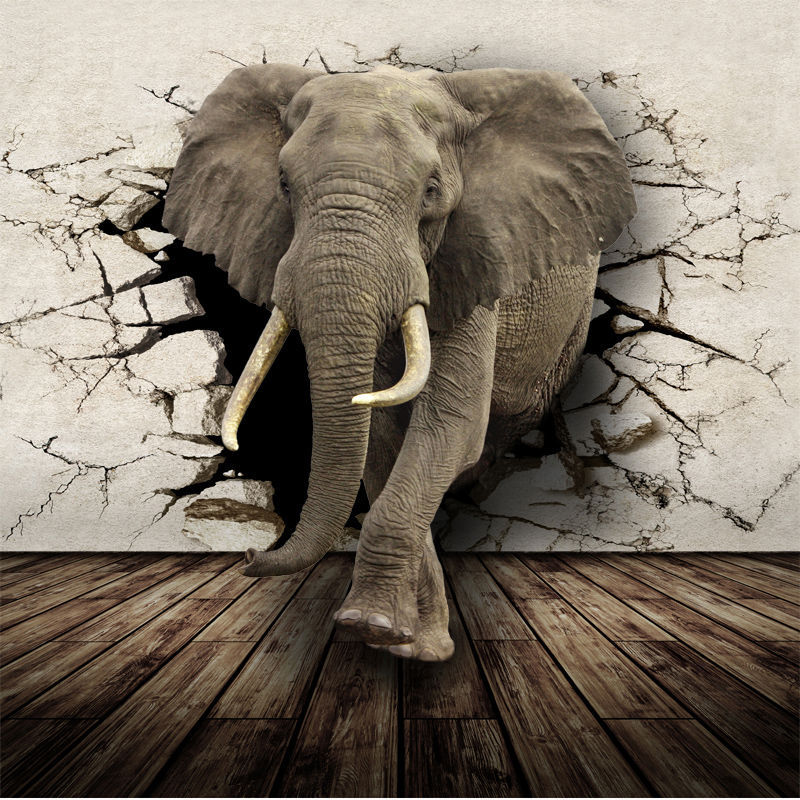 Buy 3d lifelike animal mural wallpaper for Elephant wall mural