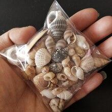 HappyKiss набор забавных морских ракушек, раковины для аквариума, морские украшения, натуральные миниатюрные раковины в средиземноморском стил...