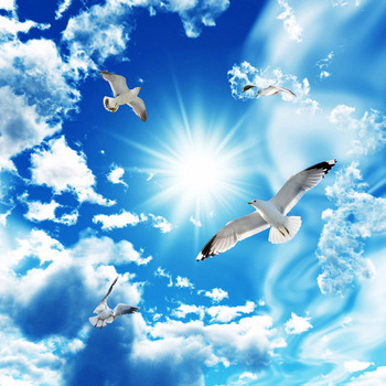 Custom Large Ceiling Zenith Mural Wallpaper 3D Stereo Blue Sky White Clouds Dove Nature Landscape Photo Mural Ceiling Wallpapers 3d room wallpaper custom mural non woven hd dream blue sky clouds flying pigeon ceiling murals photo wallpaper for walls 3 d