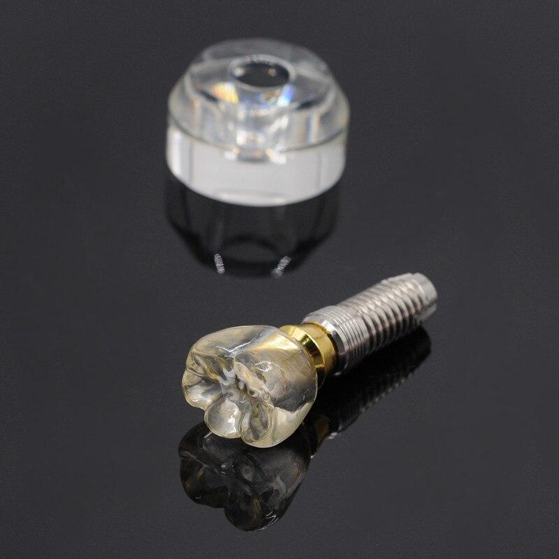 1 ensemble d'implant dentaire 3 en 1 modèle d'implant dentaire à dents simples
