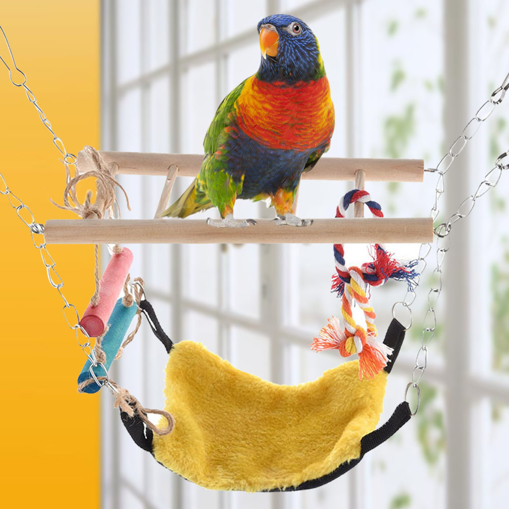 Parakeet Toys And Accessories : New pet toy colorful swings birds budgie parrot