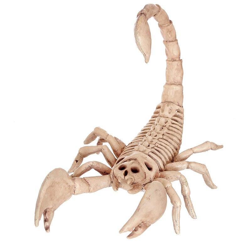 2016 Skeleton mouse scorpion cat 100% Plastic Animal Skeleton Bones ...