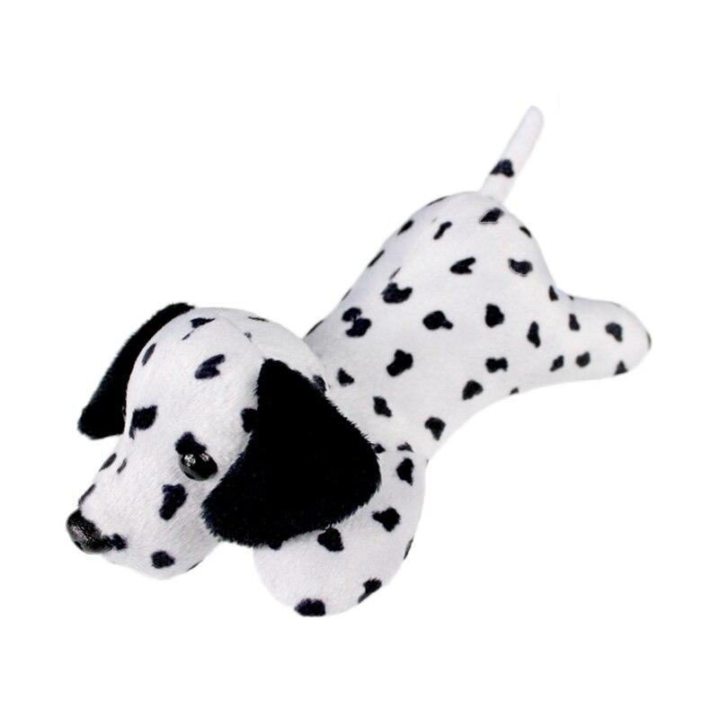 dalmatian dog_4