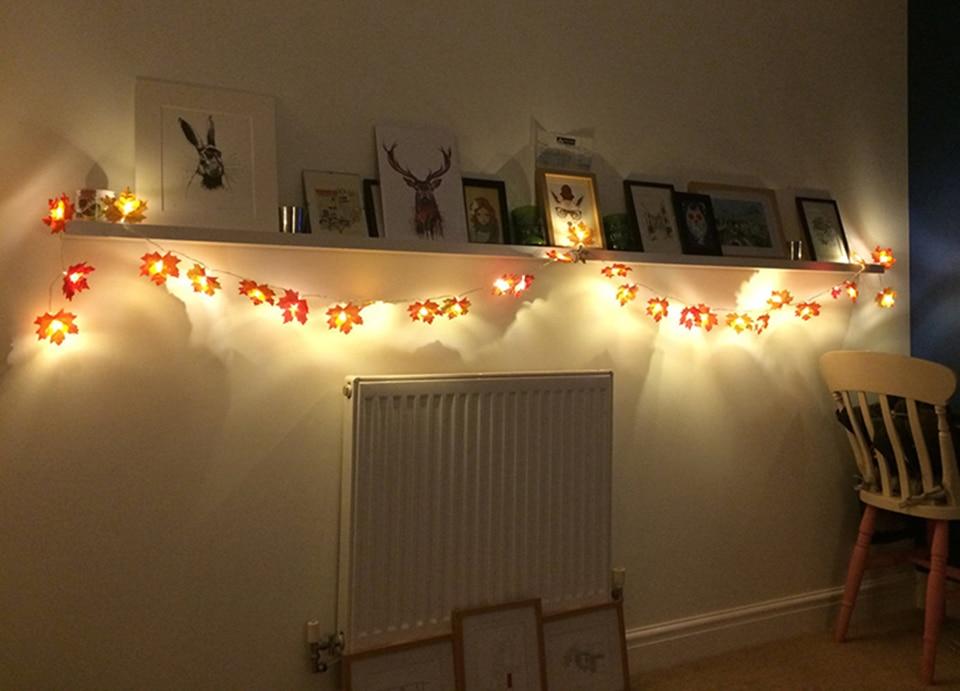 holiday light (2)