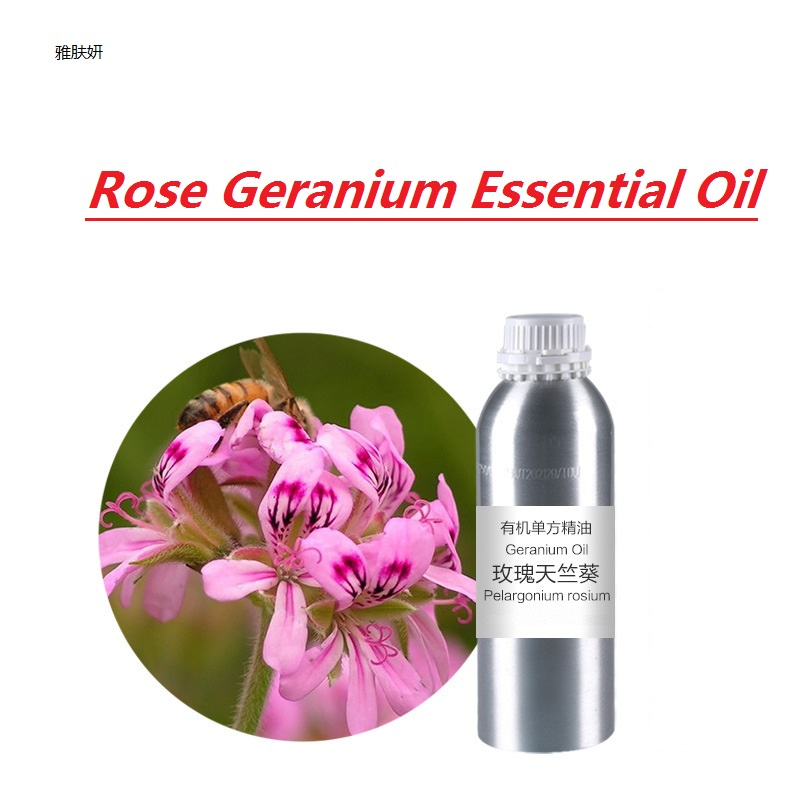 Cosmetics massage oil 10g/bottle Rose Geranium Essential Oil base oil, organic cold pressed black cumin seed india oil organic cold pressed 100