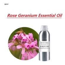 10g/bottle Rose Geranium Essential Oil base oil, organic cold pressed  vegetable oil plant oil