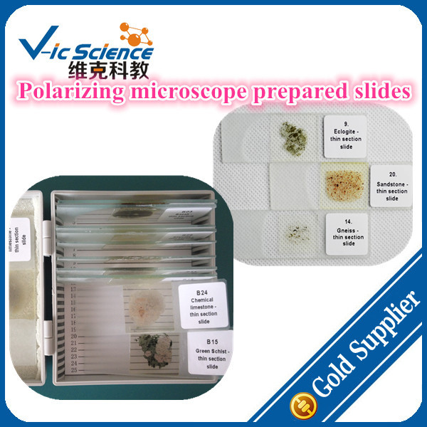 Geography polarizing microscope prepared slides set with 100pcs 100% factory 100pcs parasitology prepared slides set